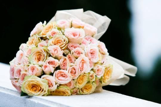 web stranice za vjenčanja i druženja mogu li samostalno ići na brza druženja